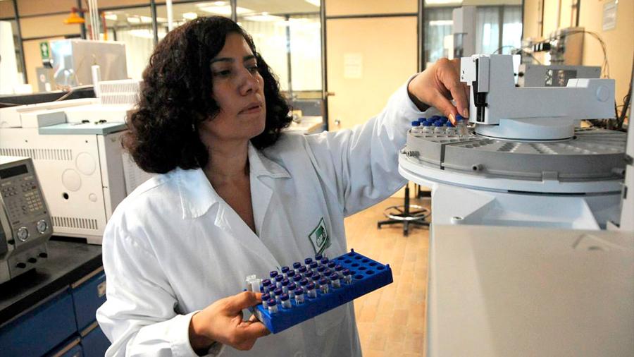 Premian a científicas mexicanas por tecnología microbiana que recupera hidrocarburos