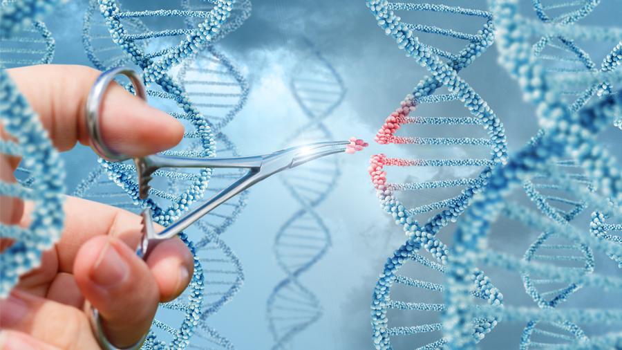La técnica estrella de edición genética puede incrementar el riesgo de cáncer