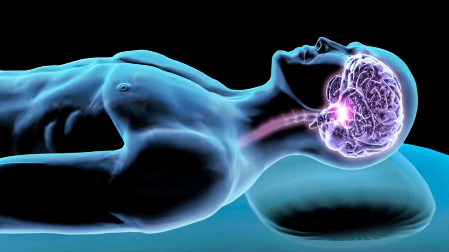 Descubren los cambios neuronales que explican la necesidad de dormir