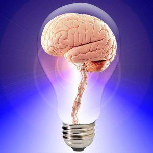 Tres cosas importantes que le pasan a tu cerebro a partir de los 25 años