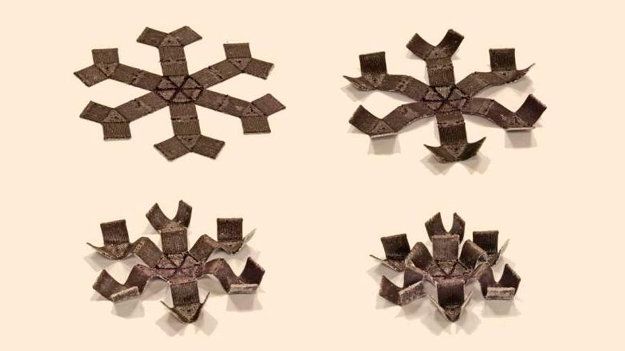 Estructuras flexibles fabricadas en 3D ejecutan movimientos sofisticados bajo un campo magnético