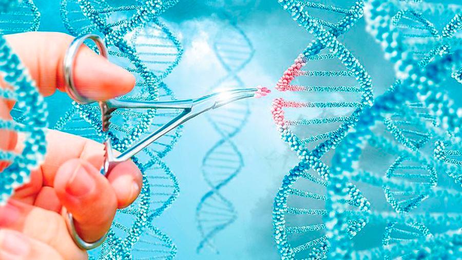 Posible mitigación del autismo mediante una técnica de edición genética