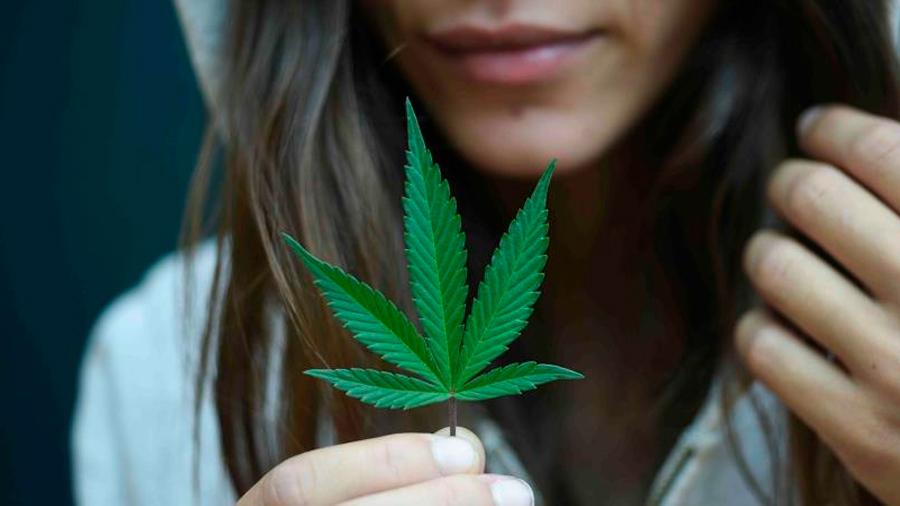 Un estudio no encuentra pruebas sólidas de que el cannabis reduzca el dolor crónico