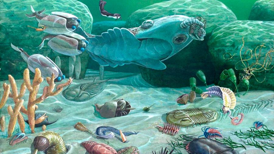 Los primeros animales del mundo causaron el calentamiento global