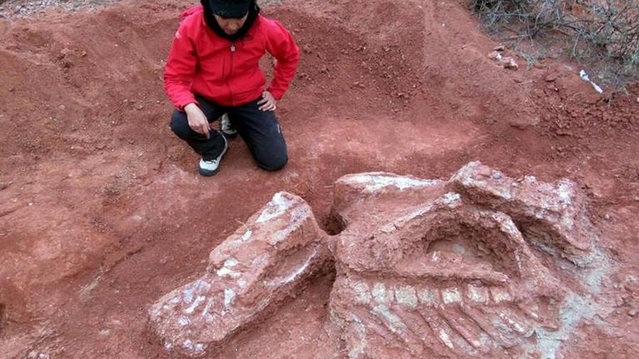 Descubren dinosaurio gigante de más de 200 millones de años