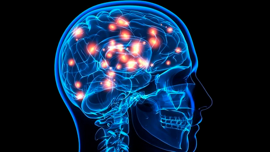 Hallan una fórmula para encender y apagar circuitos cerebrales sin cirugía
