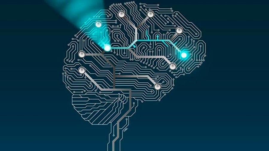 Técnica sin bisturí permite activar y desactivar circuitos neuronales