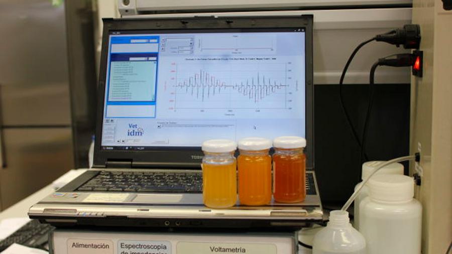 Crean investigadores españoles lengua electrónica que identifica miel adulterada