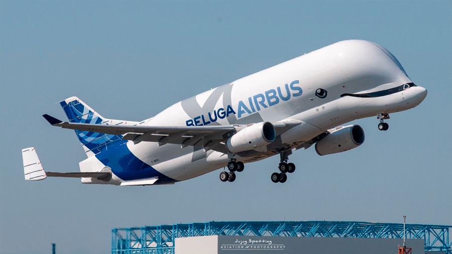 Así fue el primer vuelo de Beluga XL, el gigantesco avión de carga de Airbus con forma de ballena