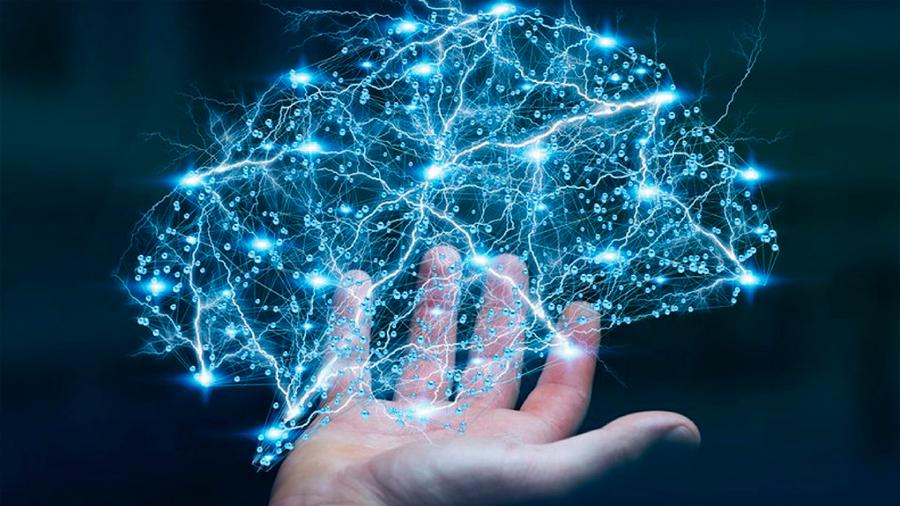 El cerebro computa información tal cual lo hacen las redes de telecomunicaciones