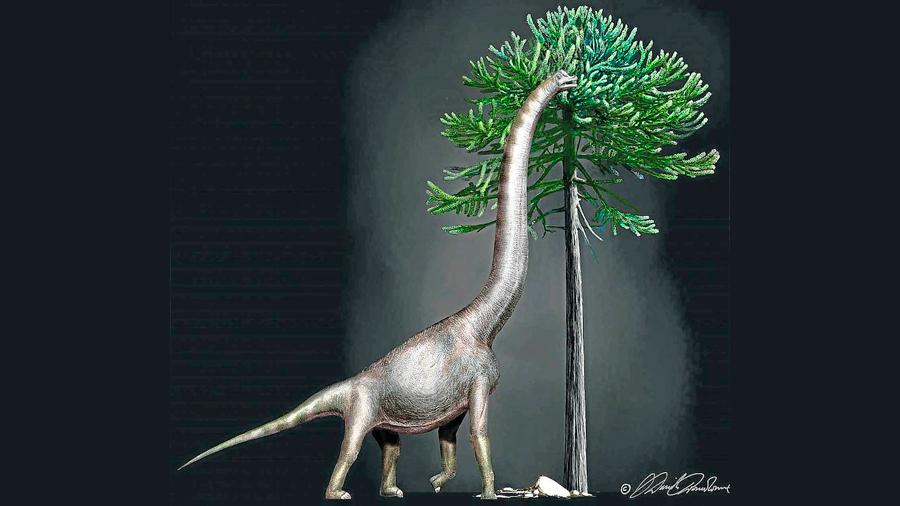 """Descubren a """"Bigfoot"""", uno de los dinosaurios más gigantescos de todos los tiempos"""