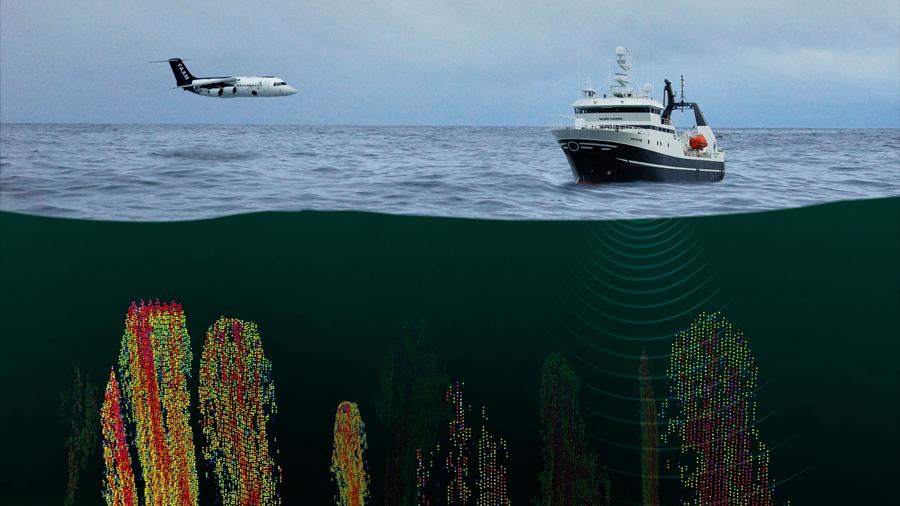 Los vientos del oeste debilitan la capacidad del Oceáno Austral para absorber CO2