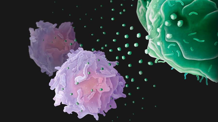 Células cancerígenas envían 'drones' biológicos a combatir el sistema inmune desde lejos