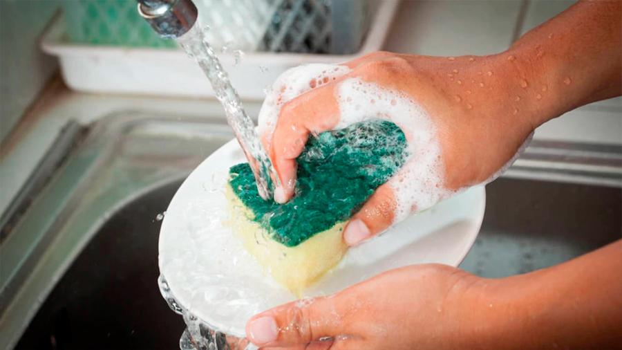 Detergente ecológico será fabricado con proteína del páncreas