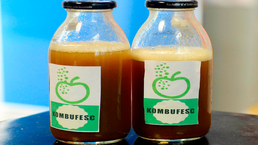 Investigadora mexicana crea bebida que reduce glucosa y presión arterial alta, comunes a obesidad y diabetes