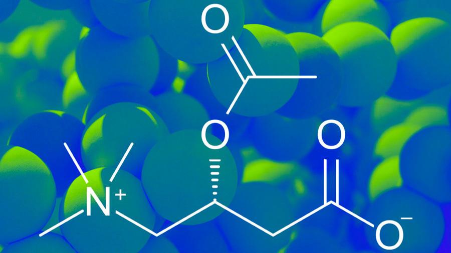 Hallan valía de una molécula que energiza células y cuyos niveles inciden en la depresión
