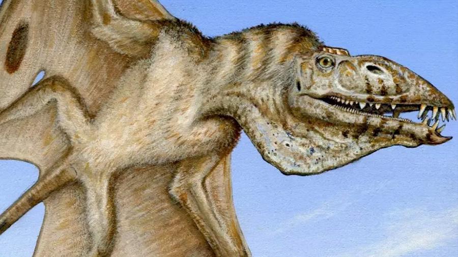 Científicos descubren fósil del primer vertebrado volador: Tenía 110 dientes y 4 colmillos