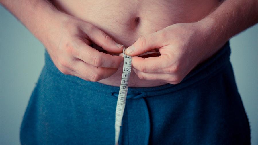 Descubren una nueva forma de tratar la obesidad que en ratones inhibe el apetito