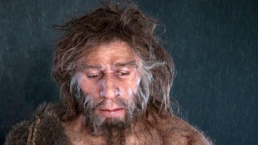 El frío habría acabado con los neandertales en la última era glacial