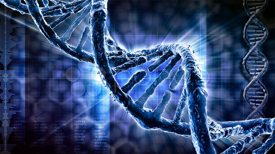 Descubren que el genoma humano podría contener hasta un 20% menos de genes de lo que se pensaba
