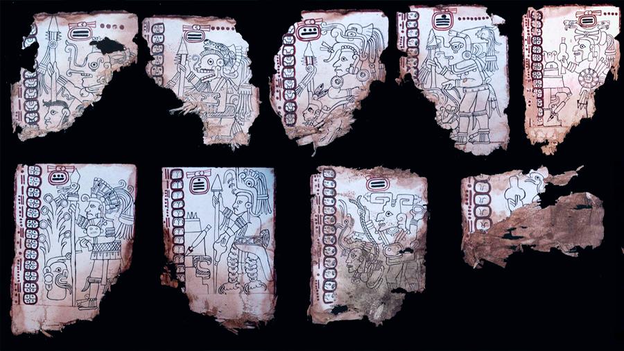 Ratifican científicos que el Códice Maya de México es el manuscrito auténtico más antiguo de América