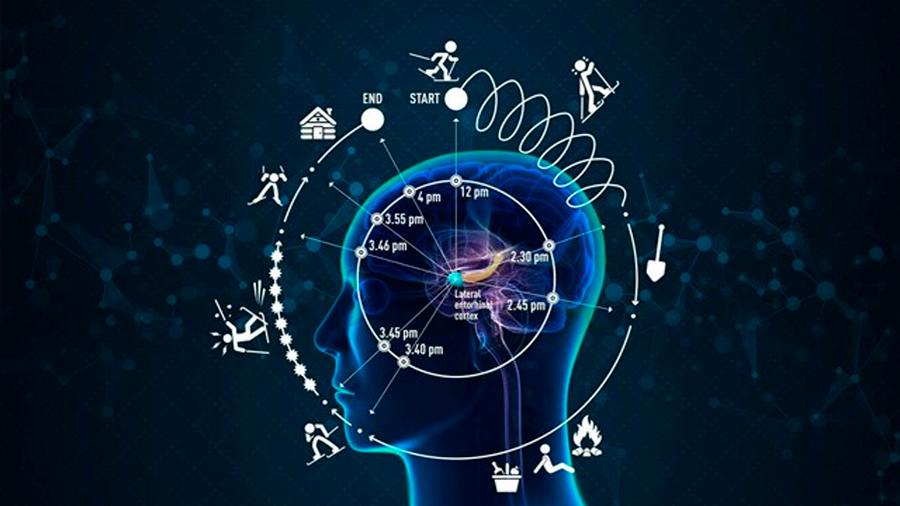 Entrenando el cerebro se puede combatir la ansiedad y el estrés