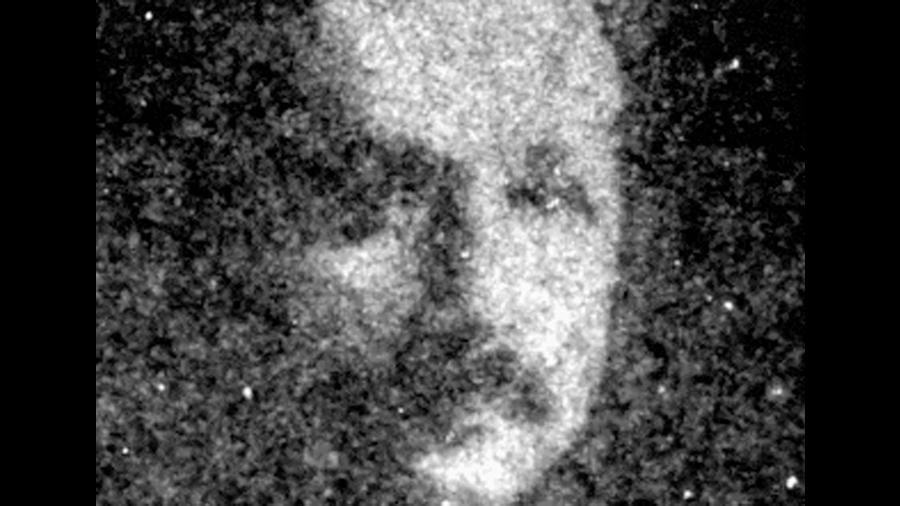 Científicos crean una imagen negativa cambiante usando bacterias fotoactivas
