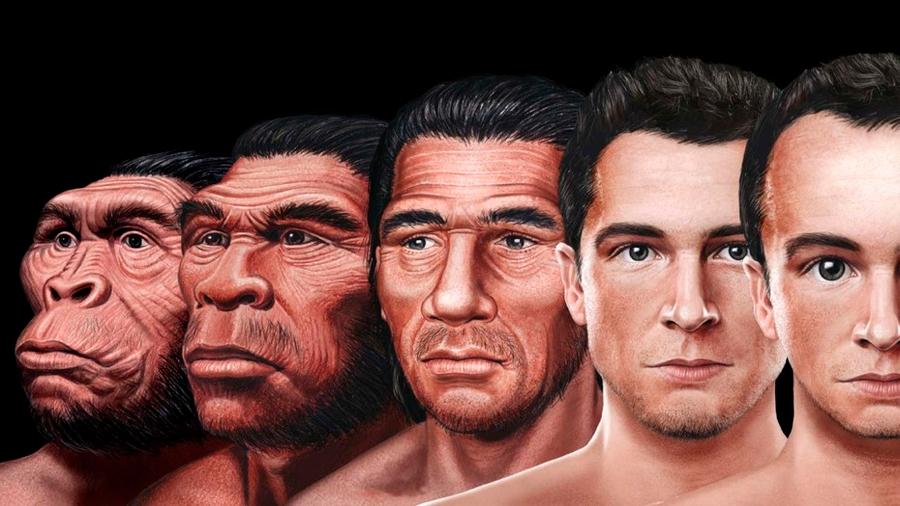 La ciencia ya sabe cómo será el rostro humano del futuro