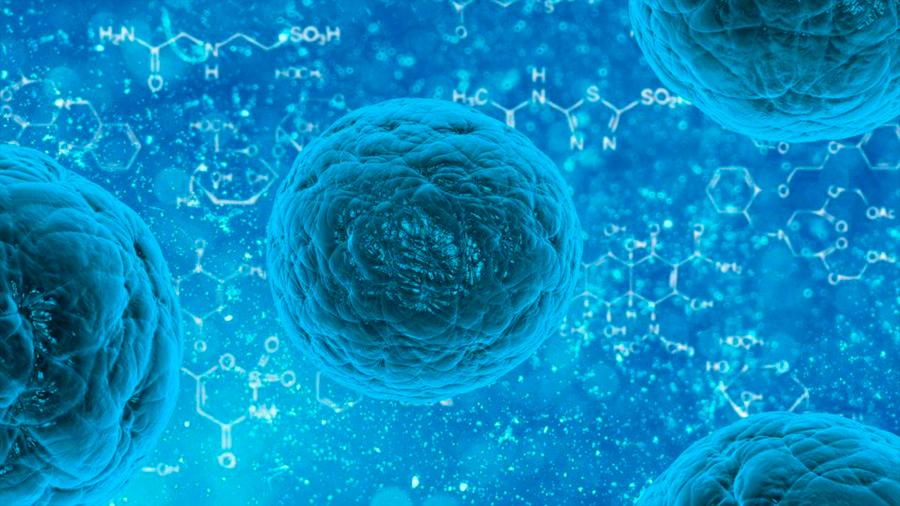"""Científicos españoles descubren un gen que """"se come"""" los tumores"""