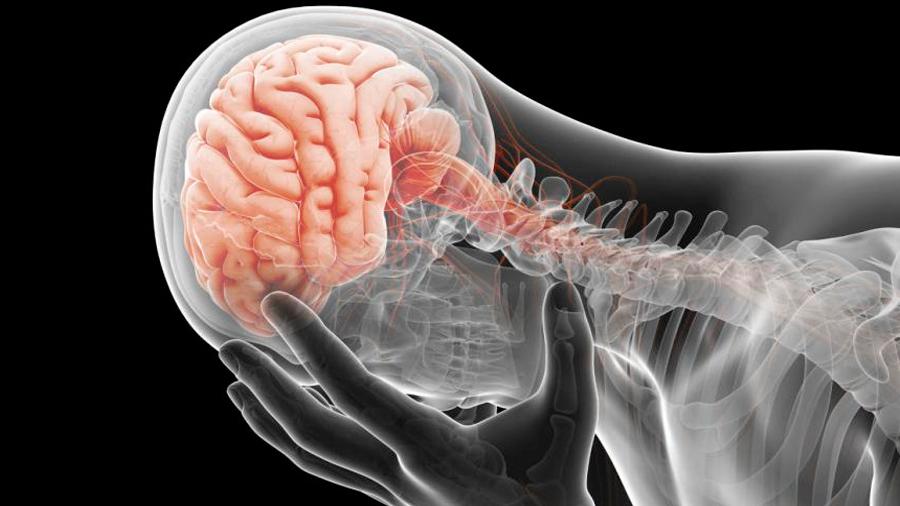 Descubren que la depresión y el trastorno bipolar se manifiestan de manera distinta en el cerebro