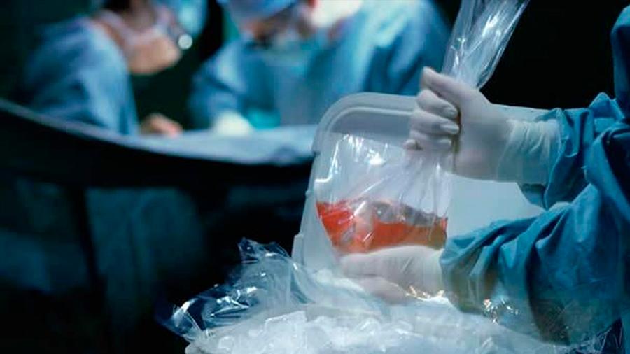 Paraguay: promulgan ley que convierte en donantes de órganos a todo mayor de edad