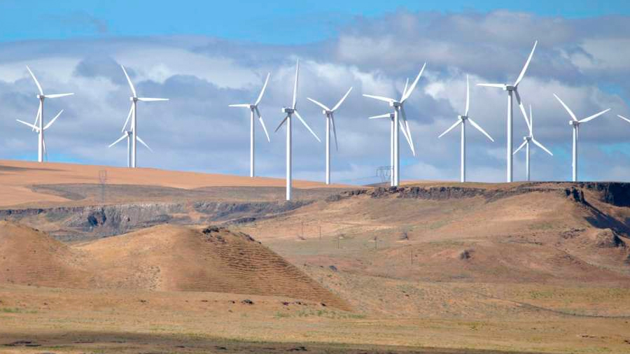 Granjas eólicas y solares, solución para que llueva más en el Sáhara