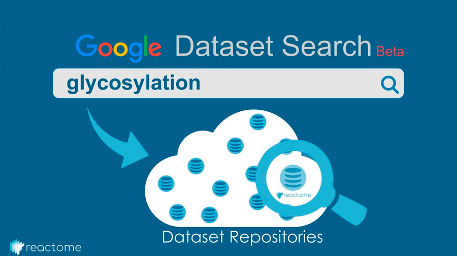 Google lanza Dataset Search, un buscador para científicos