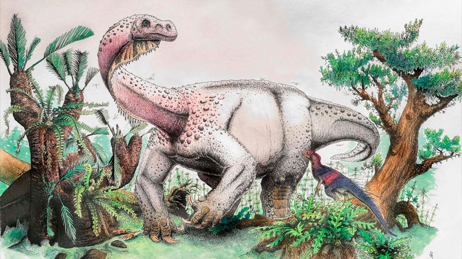Descubren a un dinosaurio de 120 toneladas, el animal más grande que pisó la Tierra