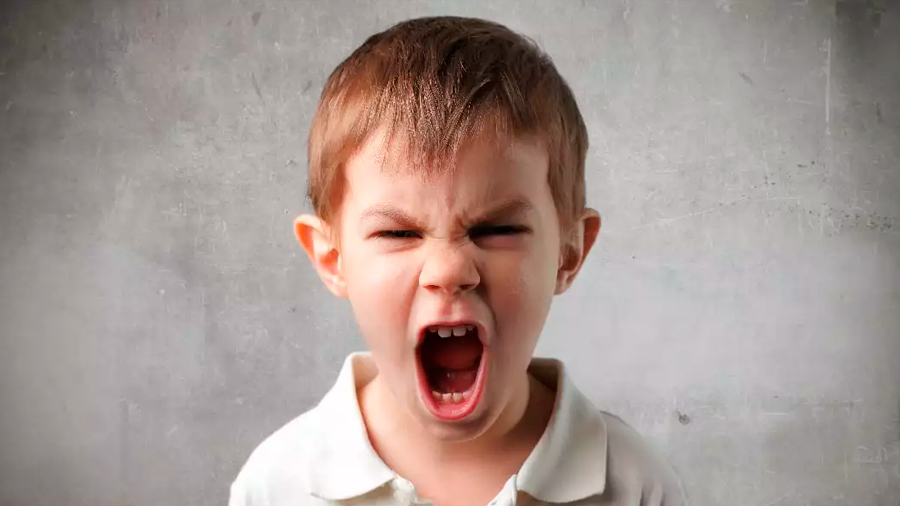 Cientificos descubren el marcador cerebral que genera agresividad en los niños