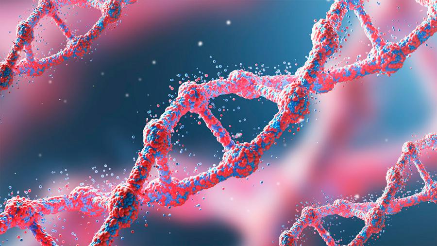 Una cuarta parte de los 20,000 genes codificadores de proteína en el humano no sido objeto de un artículo específico