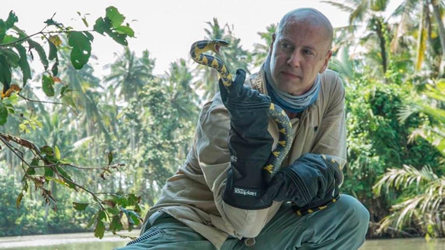 Serpientes invasoras viajaron en avión para poblar una isla