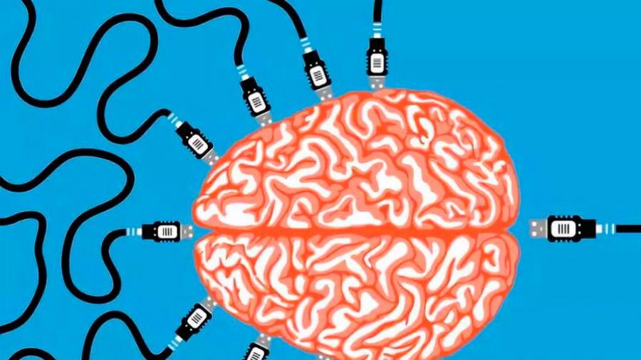 Científicos conectaron los cerebros de 3 personas logrando que resuelvan juntos una tarea