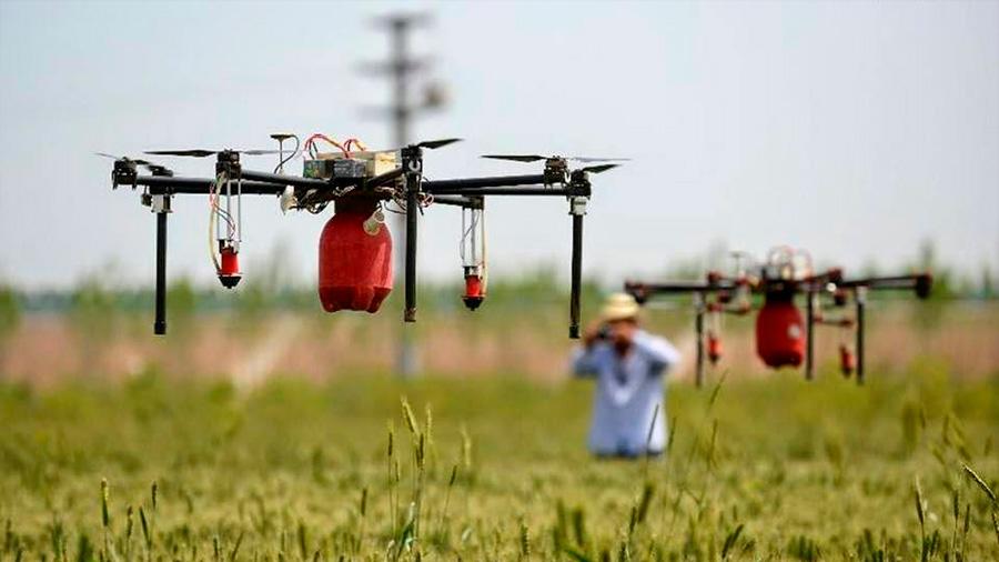 Cómo aumentar la producción agrícola con IA, sensores y drones