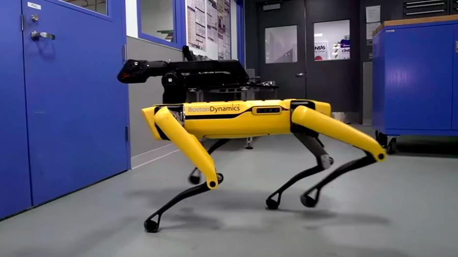 El perro robot ya se puede comprar, pero aún no está claro para qué sirve