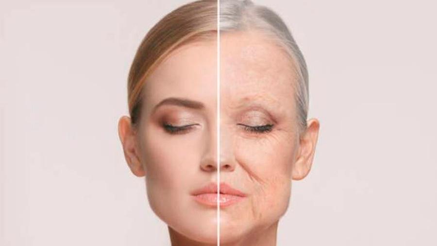 Científicos descubren sustancia natural que retrasa el envejecimiento