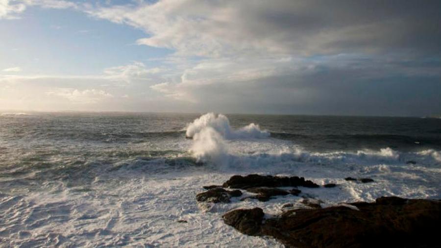 Sorpresa bajo el mar: Expedición descubre una cadena de montañas submarinas en Australia