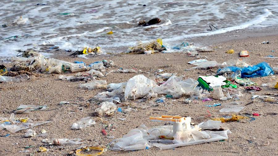 Diez veces mayor que hace una década la basura de plástico que llega a las remotas islas del Atlántico Sur