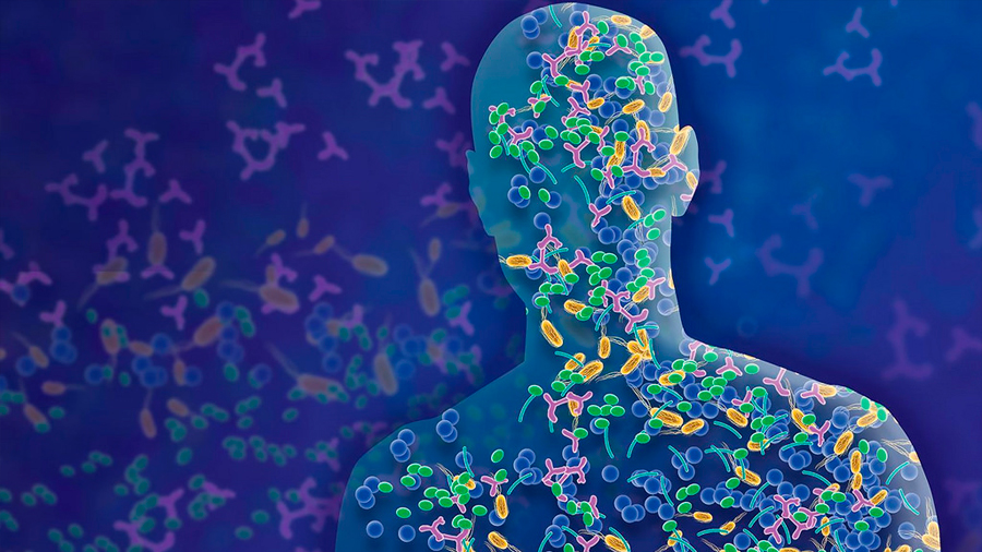 Premian a científicos mexicanos por estudio de recolonización de microbiota intestinal como tratamiento a depresión o diabetes