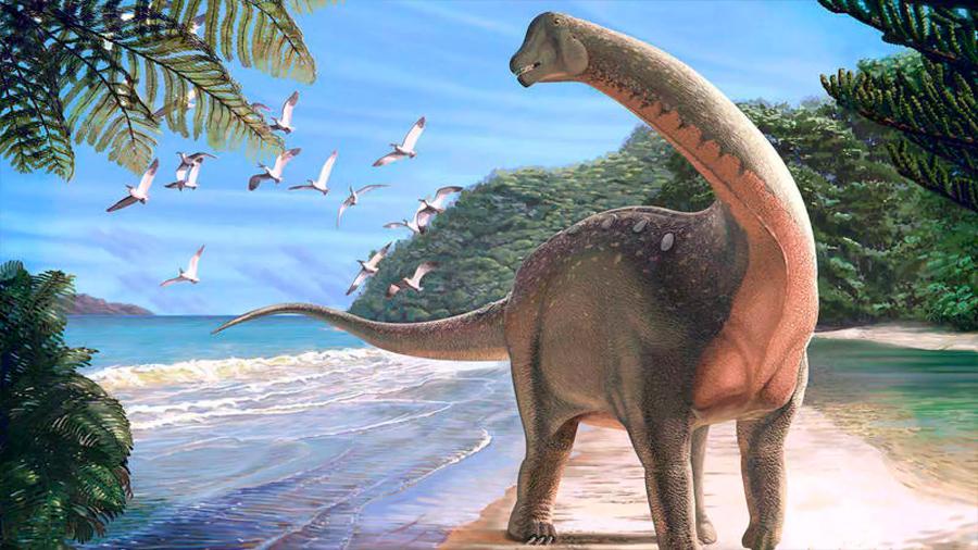 Un fósil de dinosaurio puede explicar cómo se hicieron tan grandes