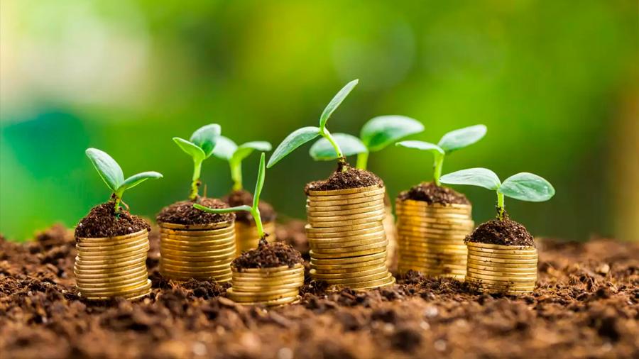 Mirar en el largo plazo para el desarrollo económico
