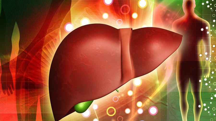 Científicos chinos descubren mejor tratamiento para rechazo de trasplante de hígado