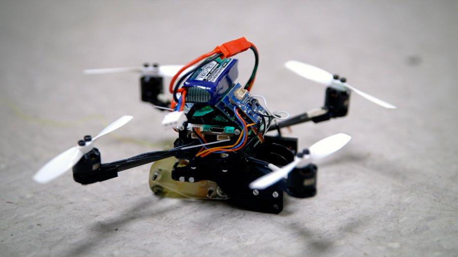 Desarrollan un dron inspirado en las avispas que es capaz de mover hasta 40 veces su peso