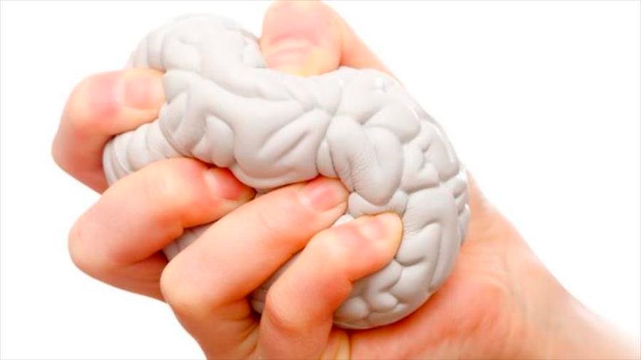 El estrés puede transformar el tamaño de tu cerebro