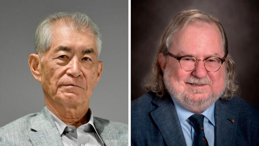 Los premios Nobel de Medicina 2018: Los frenos del sistema inmune y su aplicación en el tratamiento del cáncer